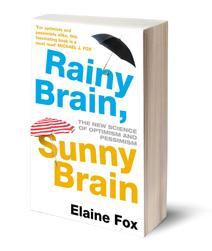 Rainy Brain Sunny Brain
